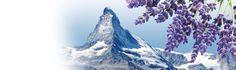 Kompedium wiedzy dla śpiochów: AventO2 - materace redukujące poziom stresu w orga...