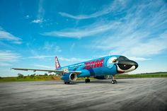 TAM airlines makes one of their planes turn into BLU :-)