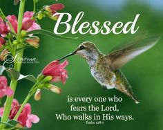 """""""Blessed is every one who fears the Lord, Who walks in HIS ways"""". (Psalm 128:1)."""