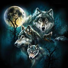 Wolf - Mond / Moon