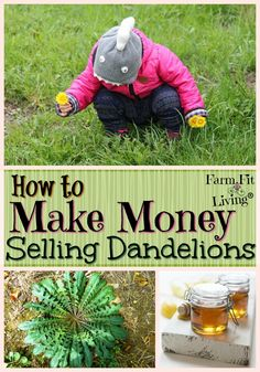 Ever wonder if you can make money selling dandelions growing naturally in your yard or field? Here are some markets to dabble in as well as some selling tips. #farmersmarkets #dandelions #springflowers via @www.pinterest.com/farmfitliving