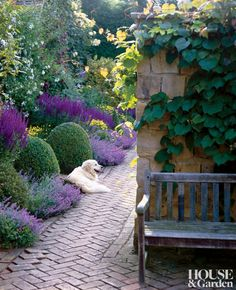 A traditional garden in Sussex, England Love the brick work pattern, and the plants in the purple hues.