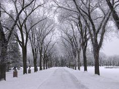 winter scenes - Google Search