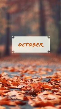 55 Ideas For Macbook Wall Paper Autumn October Wallpaper, Cute Fall Wallpaper, Phone Backgrounds, Iphone Wallpaper, Neuer Monat, October Country, Autumn Aesthetic, Happy Fall Y'all, Fall Pictures