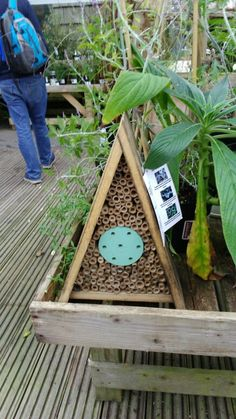 Bee house eden project