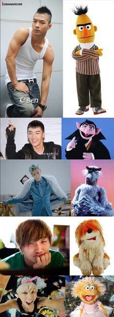 Hmmmm...BIGBANG as muppets..GD as htat one girl muppet