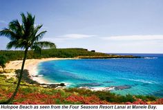 Four Seasons Resort Lanai at Manele Bay - Lanai City, Hawaii Honeymoon Vacations, Honeymoon Spots, Hawaii Honeymoon, Best Vacations, Hawaii Travel, Vacation Spots, Hawaii Hawaii, Hawaii Life, Hawaii Vacation