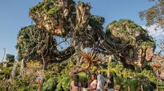 Moms Panel Monday: Welcome to Pandora-The World of Avatar | Disney Parks Blog