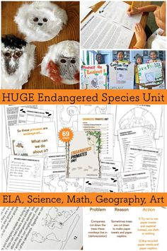 Endangered Species Unit for Kids with Math, Science, ELA, Geography, and Art interdisciplinary lessons. Using a variety of media and hands-on activities, reading scientific, nonfiction passages, listening to powerpoints, watching videos, reading on-line databases, giving student reports, plus masks, posters, games, word problems, science vocab, exploring science careers, handwriting sheets, mapping endangered primates, estimating, journal prompts, visual organizers, and more.