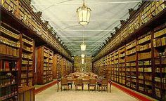 Pavia - Biblioteca Universitaria, Salone Teresiano