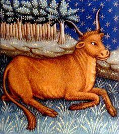 The Honest to Goodness Truth on Taurus Horoscope – Horoscopes & Astrology Zodiac Star Signs Taurus And Sagittarius Compatibility, Taurus Traits, Zodiac Signs Taurus, Zodiac Star Signs, Sun In Taurus, Taurus Love, Taurus Woman, Scorpio Moon, Saint Seiya