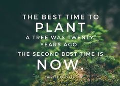 There is a Chinese proverb that says: The best time to plant a tree was 20 years ago. The next best time is now. You could say the exact same thing about building your online networks of influence. The best time to start building a social network that increases your visibility and enhances your reputation …