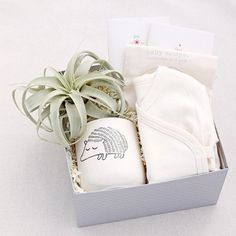Curated baby gifts by Pumeli.