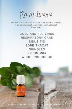 Ravinstara! A must have for kiddos and to combat common illnesses! Create your own account to order wholesale today! Sponsor#1525660