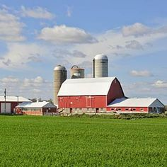 """Minnesota farm--and the silo in the middle looks like a """"grain-stor""""---built by my dad. Great Places, Places Ive Been, Beautiful Places, Minneapolis City, Minnesota Home, North Country, Back Road, Old Barns, Farm Life"""