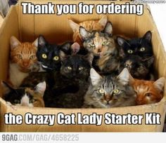 Crazy Lady Starter Kit, I'll be ordering this eventually.
