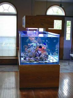 I like the fact that you can walk all around this tank. center piece of a room. easy maintenance