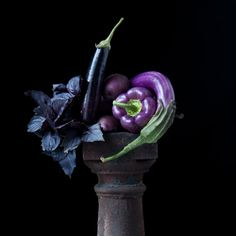 Study in Purple by Lynn Karlin - photograph, limited edition archival pigment print. For more information see MaineFarmlandTrustGallery.com