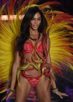Victoria Secret Fashion Show 2015! On the blog #StarInMoi