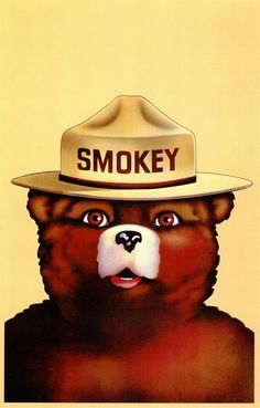 Smokey the Bear! Only you can prevent forrest fires!