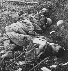 Fallen soldiers   History Wars
