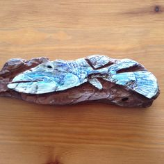 Fish/ driftwood