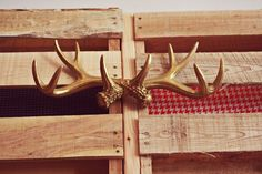to everyone who made fun of me for having antlers. ;) these are a display piece from http://www.shopredvelvet.com/