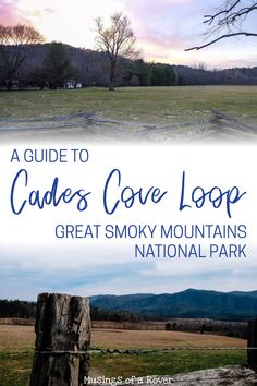 Driving the Cades Cove Loop Road Headed to Great Smoky Mountains National Park? This popular loop road is one of Gatlinburg Tennessee, Tennessee Vacation, Cruise Travel, Travel Usa, Alaska Travel, Alaska Cruise, Most Visited National Parks, Mountain Vacations, Viewing Wildlife