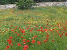 Arenys De Munt en Cataluña