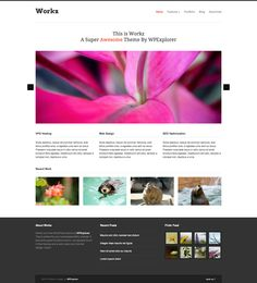 Workz is a WordPress theme I've created exclusively for release atWPExplorer.com. It features a design/function specifically for business and portfolio style websites so you can showcase your work and what your business is all about. The homepage has a custom layout driven by custom post types with a tagline, nivo image slider, homepage highlights and recent works section. The portfolio allows you to easily add unlimited items and categories via custom post types. You can create a…