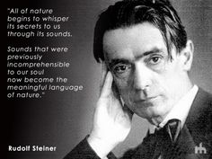 All of nature begins to whisper its secrets to us through its sounds - Rudolf Steiner