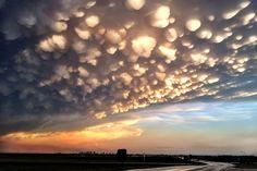 Mammatus son bolsas de nubes que se forman y cuelgan debajo de la base de otra nube. Cuando el aire y las nubes que las sostienen en diferentes niveles de humedad se mezclan, las más pesadas se hunden por debajo de la más ligeras.