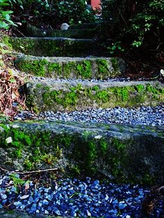 fairy tale steps
