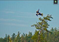 Eagle in Flight ~ Upper Peninsula