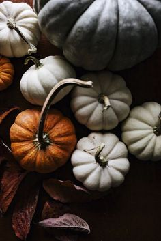 Pumpkins. Autumn colors #autumn