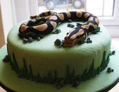 Snake birthday cake with good grass on sides and stones