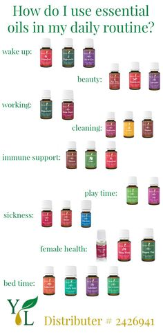 How To Use Essential Oils In Your Daily Routine