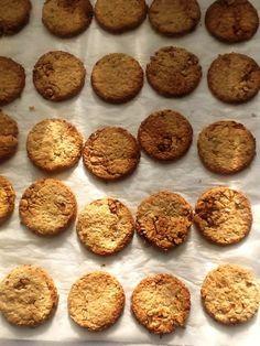 Contundentes galletas integrales de avena con nueces y miel para tomar con un buen tazón de leche