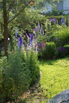 Garden Of Eden, Dream Garden, Stepping Stones, Outdoor Decor, Plants, Gardening, Blog, Gardens, Natural Garden