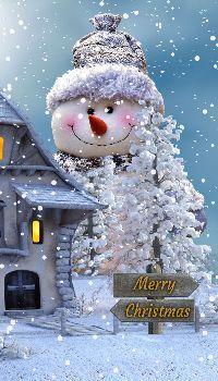 Christmas occasion Snowman Quotes, Snowman Images, Snowmen Pictures, Snowman Emoji, Snowman Hat, Christmas Snowman, Snowman Wallpaper, Snowman Clipart, Winter Season