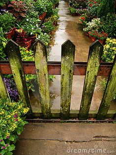 Beyond the garden gate- love the weathered green