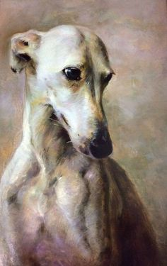 A beautiful painting which I think expresses well the gentle, sweet nature of a … Dog Portraits, Portrait Art, Beautiful Dogs, Animals Beautiful, Greyhound Art, Whippet Dog, Animal Paintings, Beautiful Paintings, Dog Art