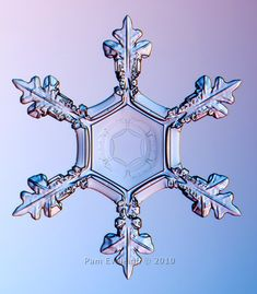 Real snowflake pic taken with a microscopic camera - God's creation is gorgeous down to the smallest of details!!