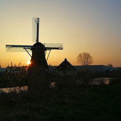 Cycling home from a small joyful family gathering. Doesn't matter if you've lived in the Netherlands your whole life: you'll stop to watch the sunset behind a windmill.  #halcyonsundays . . . #dutchwindmill #lovelysquares #livecolorfully #myeverydaymagic #momentsofmine #tranquility #themidwintermovement #embracingtheseasons #seeingthepretty #aseasonalyear #colourfulleiden #theprettycities #dutchskies #stadvanontdekkingen #leiden #windmill #molen #zonsondergang