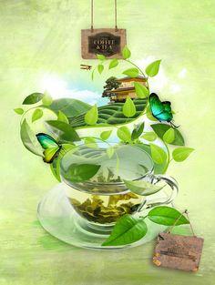 Neil Duerden Green Tea illustration packaging by Neil Duerden