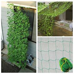 Garden Vegetable Plant Net Flowers Melon Climbing Grow Fence Plant Protect Cover