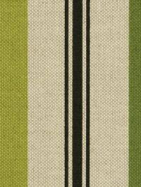 Morning Stripe Leaf by Robert Allen