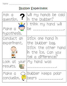 blubber experiement...fun idea for science or a reading unit with polar bears :)