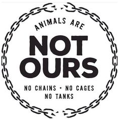 Animals are not commodities, not ours to cage, confine, repress and exploit, not ours to use to objects to clothe feed us and 'entertain' us. #NotOurs #EndExploitation #GoVegan EM-C