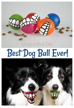 Best Dog Ball Ever, Grinz Balls. If you have a dog and a sense of humor you NEED this Grinz Ball in your life. Hours of laughter